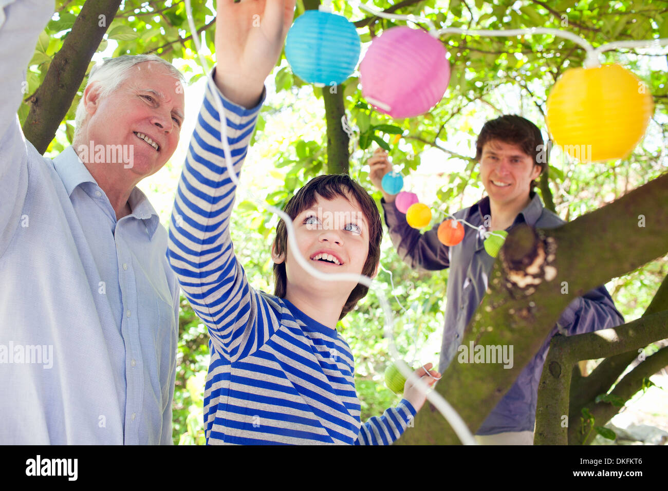 Three generation family putting fairy lights in tree Stock Photo