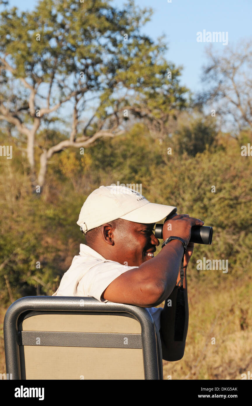 Game Drive, Sabi Sand Game Reserve, South Africa - Stock Image
