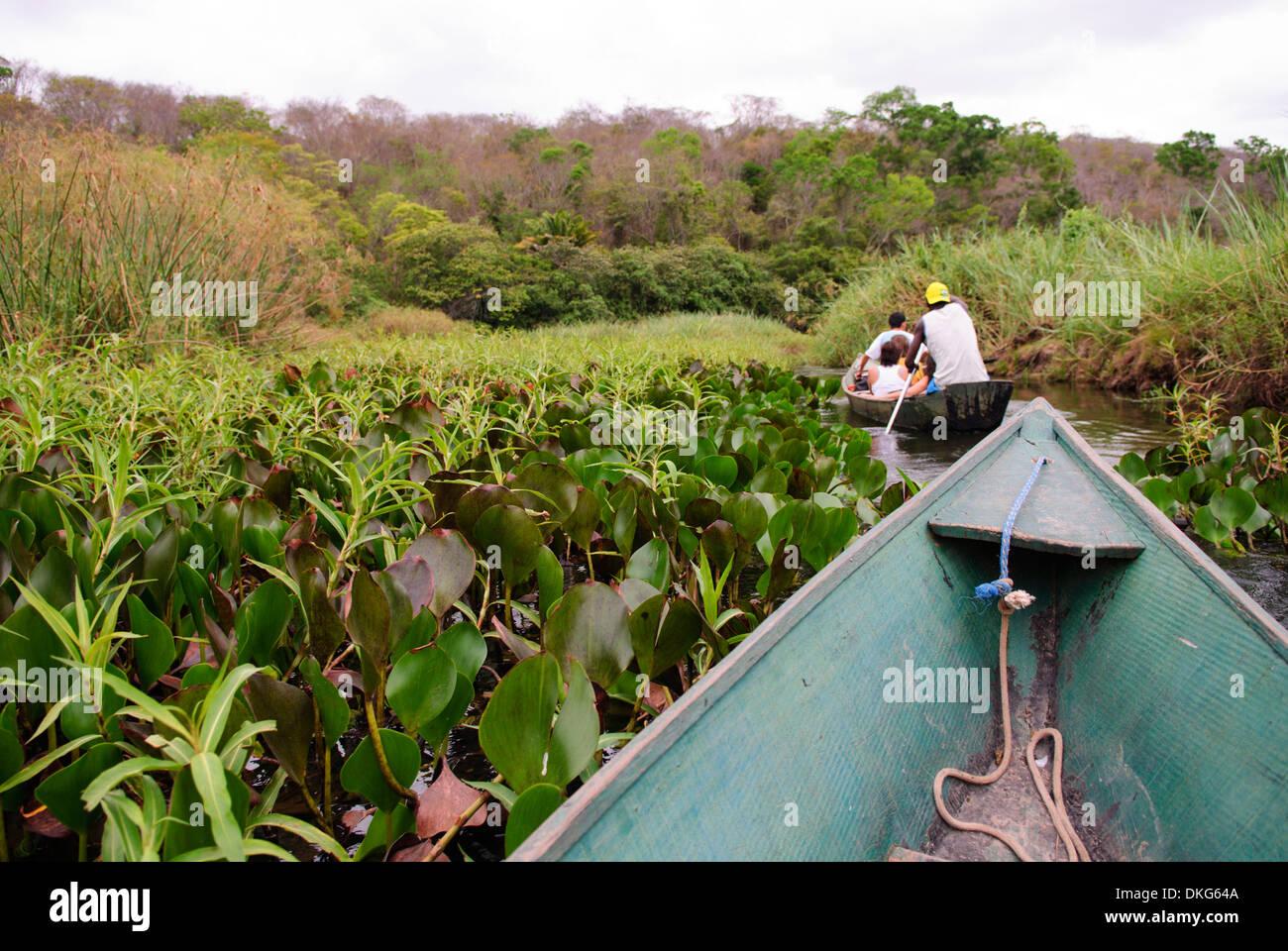 Chapada Diamantina, Lencois, Bahia, Brazil: Tourists with their local travel guides on a boat trip through the Mini-Pantanal ... - Stock Image