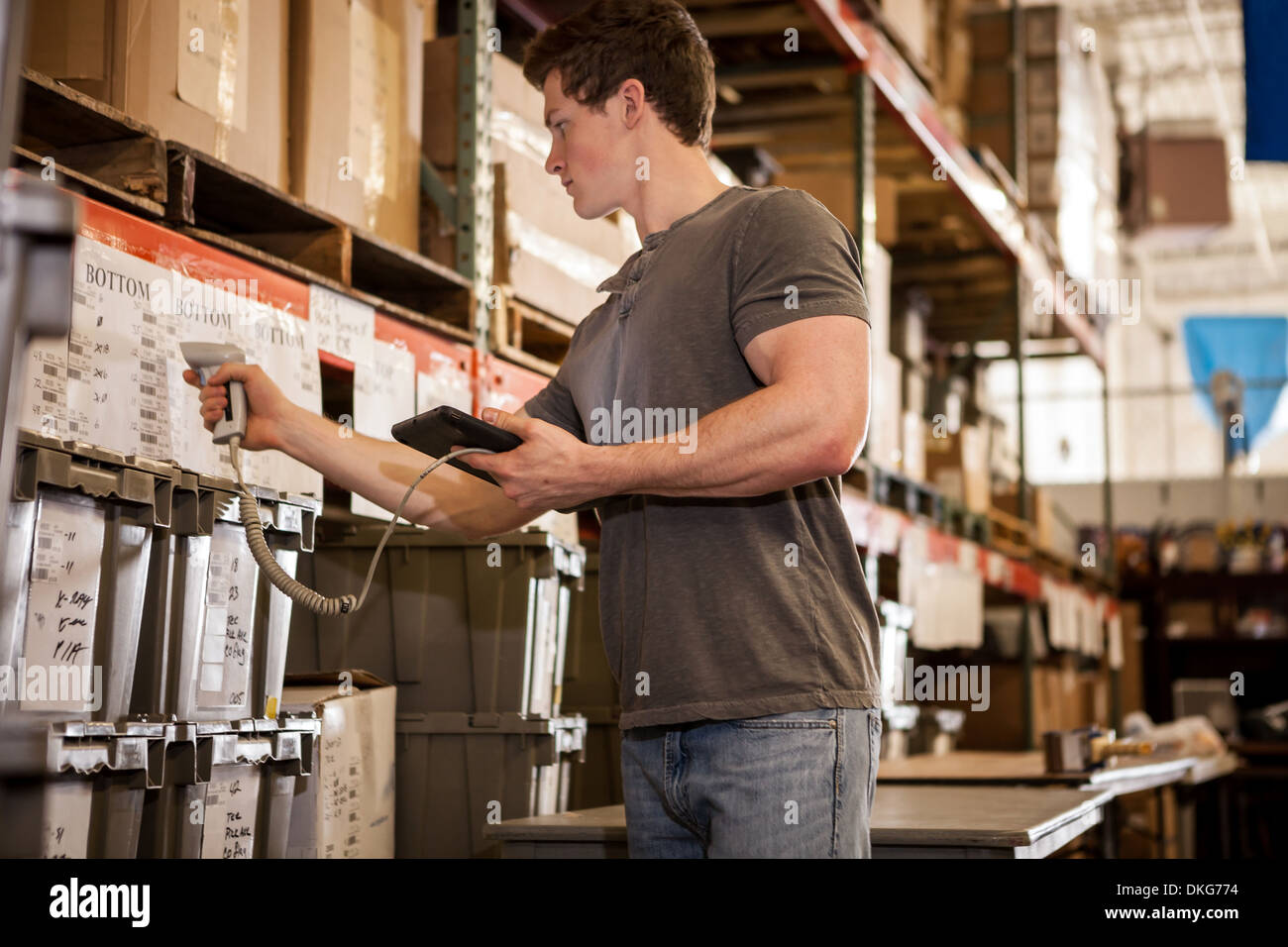 Worker in warehouse scanning barcode on cardboard box - Stock Image