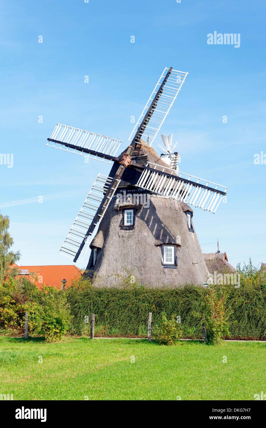 Windmill, Dorf Mecklenburg, Mecklenburg Western-Pomerania, Germany, Europe - Stock Image