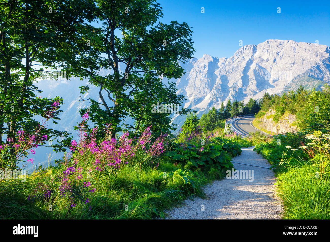 Mountain road in the Berchtesgaden Alps at the Hoher Goell, Bavaria, Germany Stock Photo