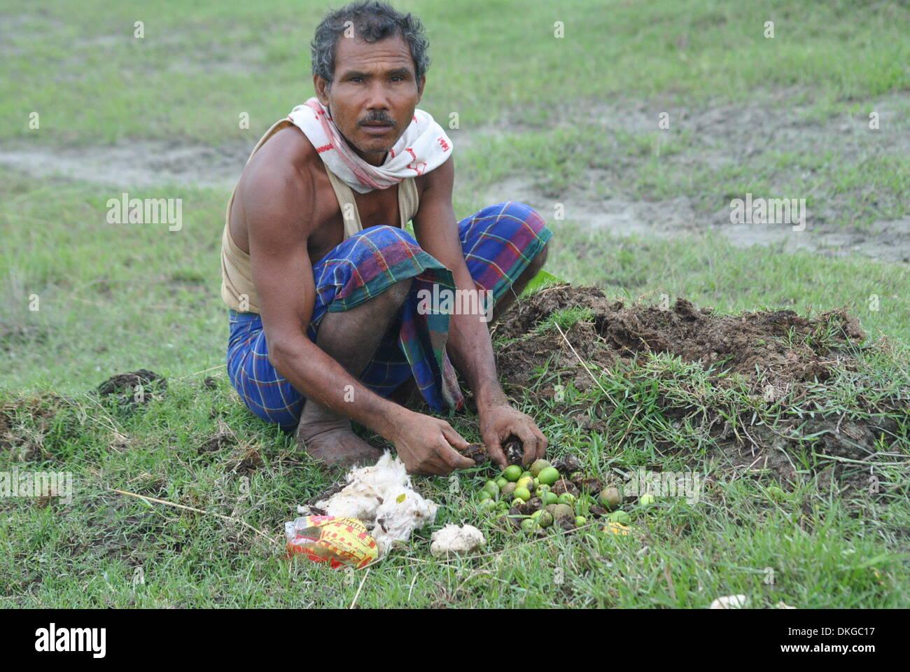 Waldmann Jadav Payeng vom Stamm der Mising, aufgenommen am 27.10.2013 im Bezirk Jorhat im Bundesstaat Assam in Indien.Stock Photo