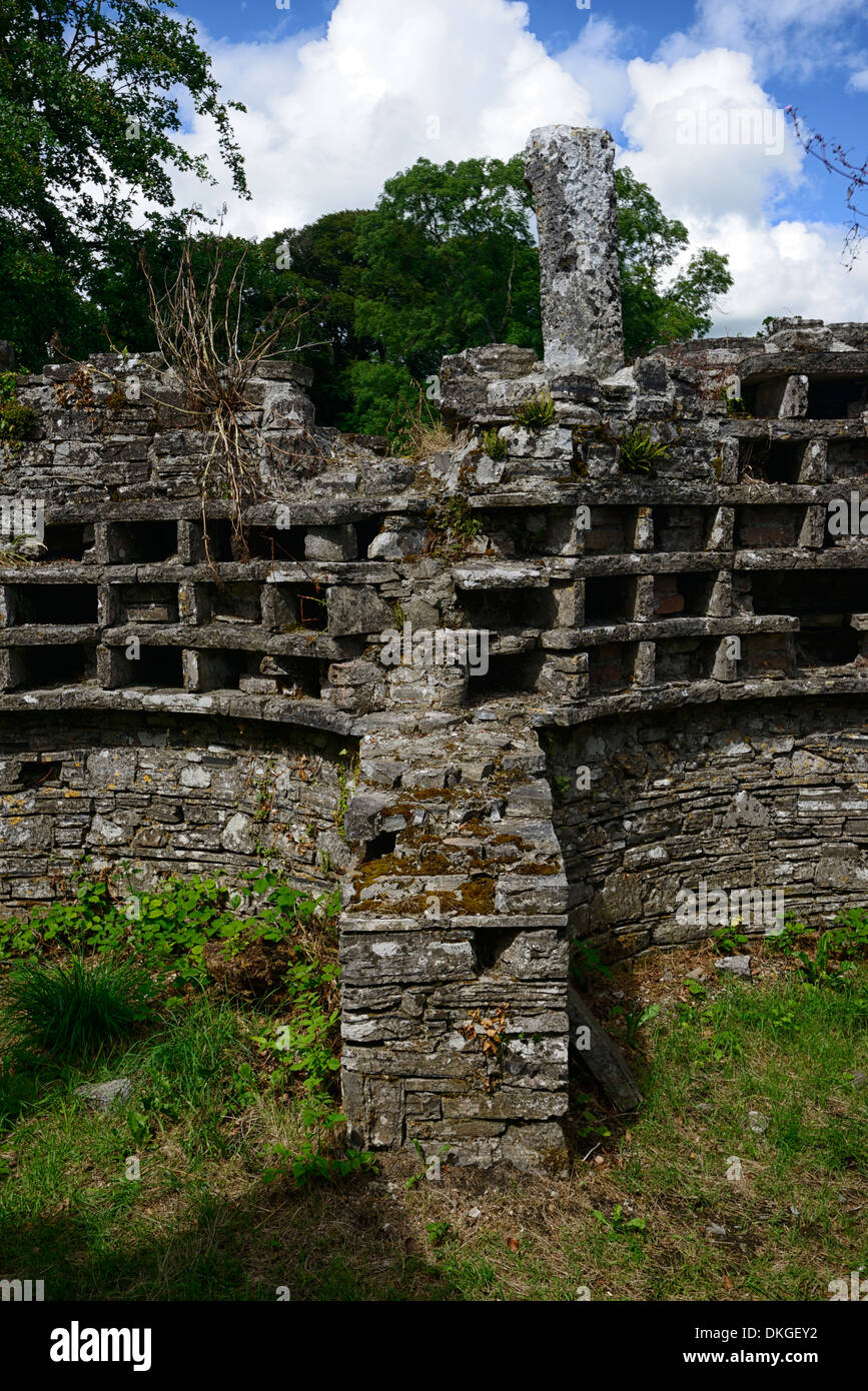 old disuse disused dove cote coot dovecote ruin ruined ballindoolin house offaly ireland - Stock Image
