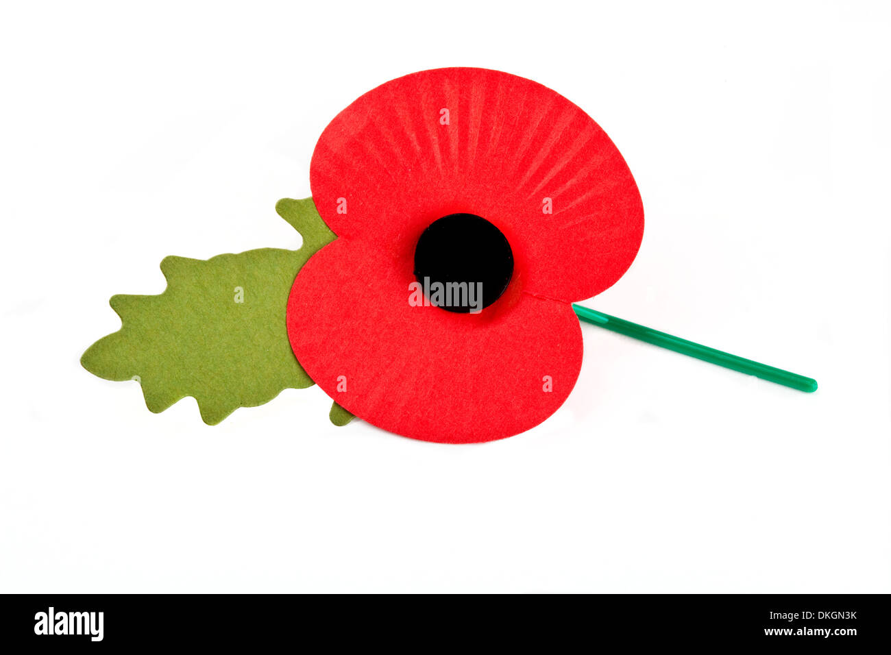 Poppy to commemorate the Commonwealth War Deaths in both World Wars. - Stock Image