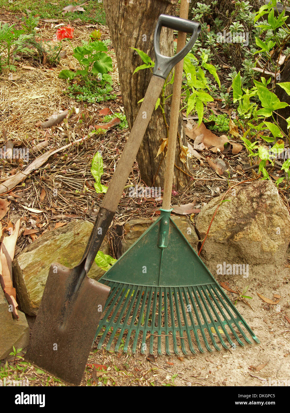 Common Gardening Tools Plastic Leaf Rake And Spade Leaning