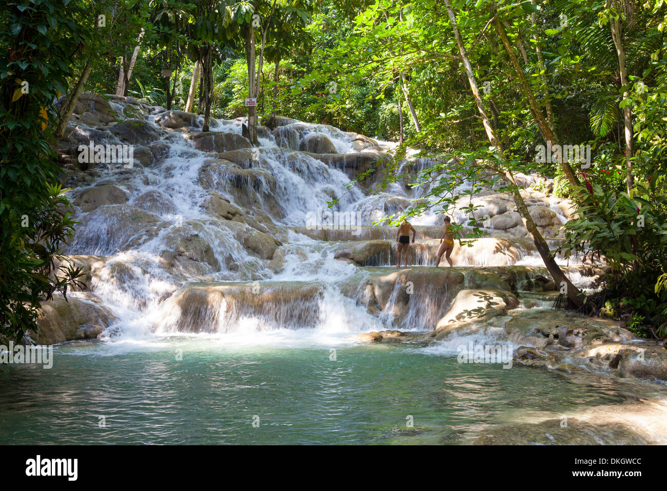 Dunns River Falls, Ocho Rios, Jamaica, West Indies, Caribbean, Central America - Stock Image