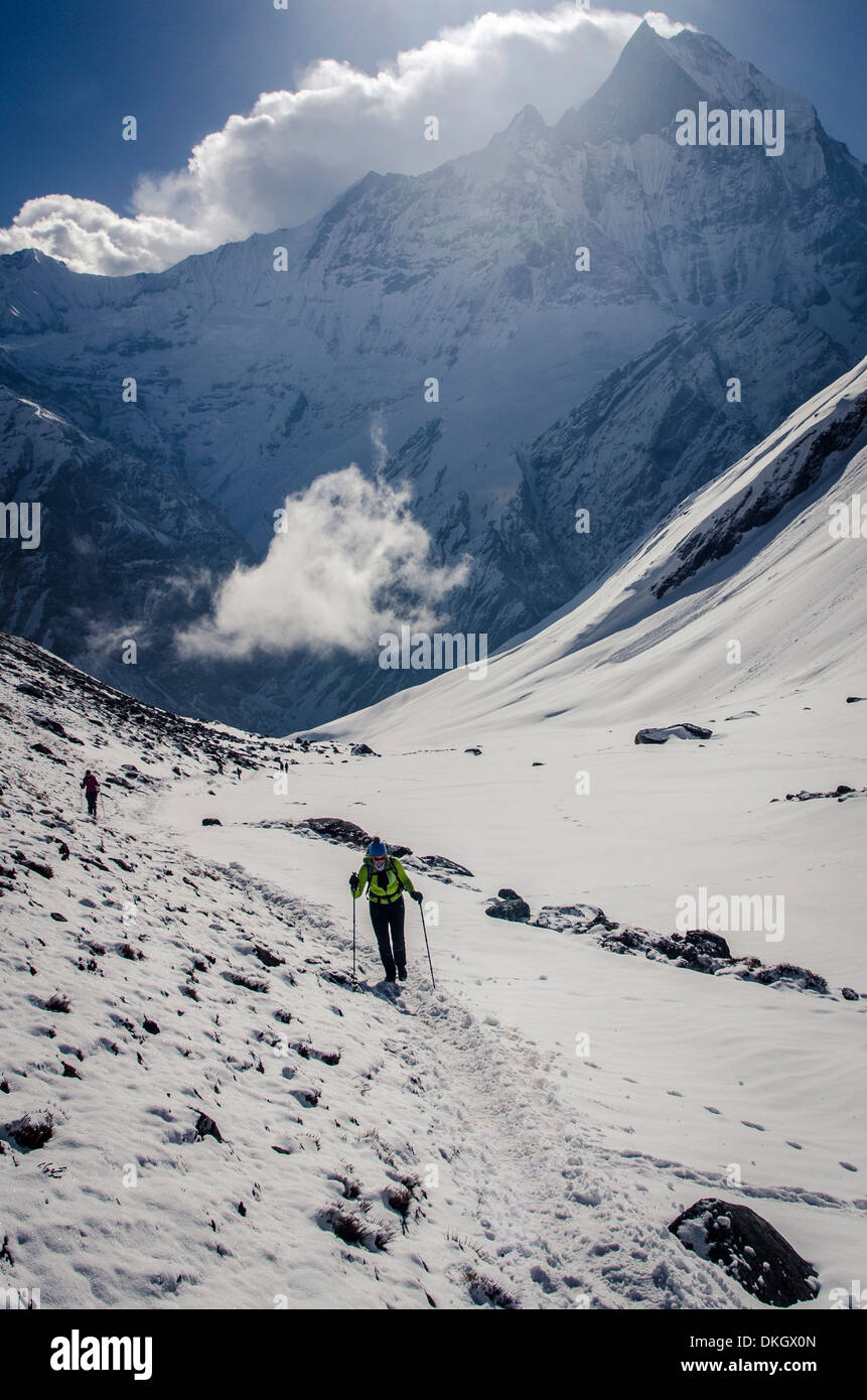 A hiker ascends the Modi Khola Valley to Annapurna, Annapurna Conservation Area, Nepal, Himalayas Stock Photo