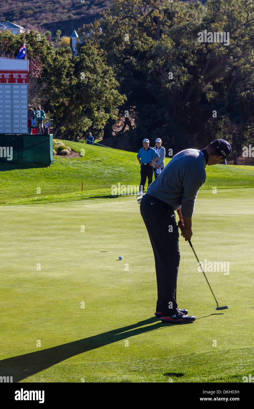 Tiger Woods, 18th green at the 2013 Northwestern Mutual Challenge at Sherwood Country Club in Thousand Oaks California - Stock Image