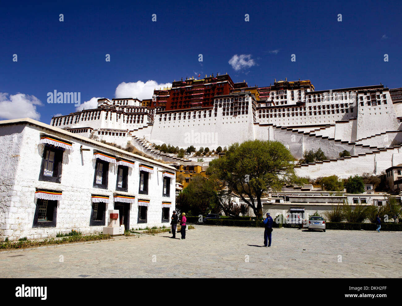 The Potala Palace, UNESCO World Heritage Site, Lhasa, Tibet, China, Asia - Stock Image