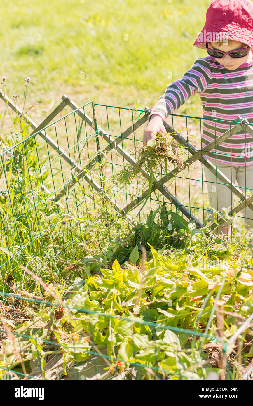 Front view of young child in garden helping with chores. Filling the compost bin with  plants and flowers. - Stock Image