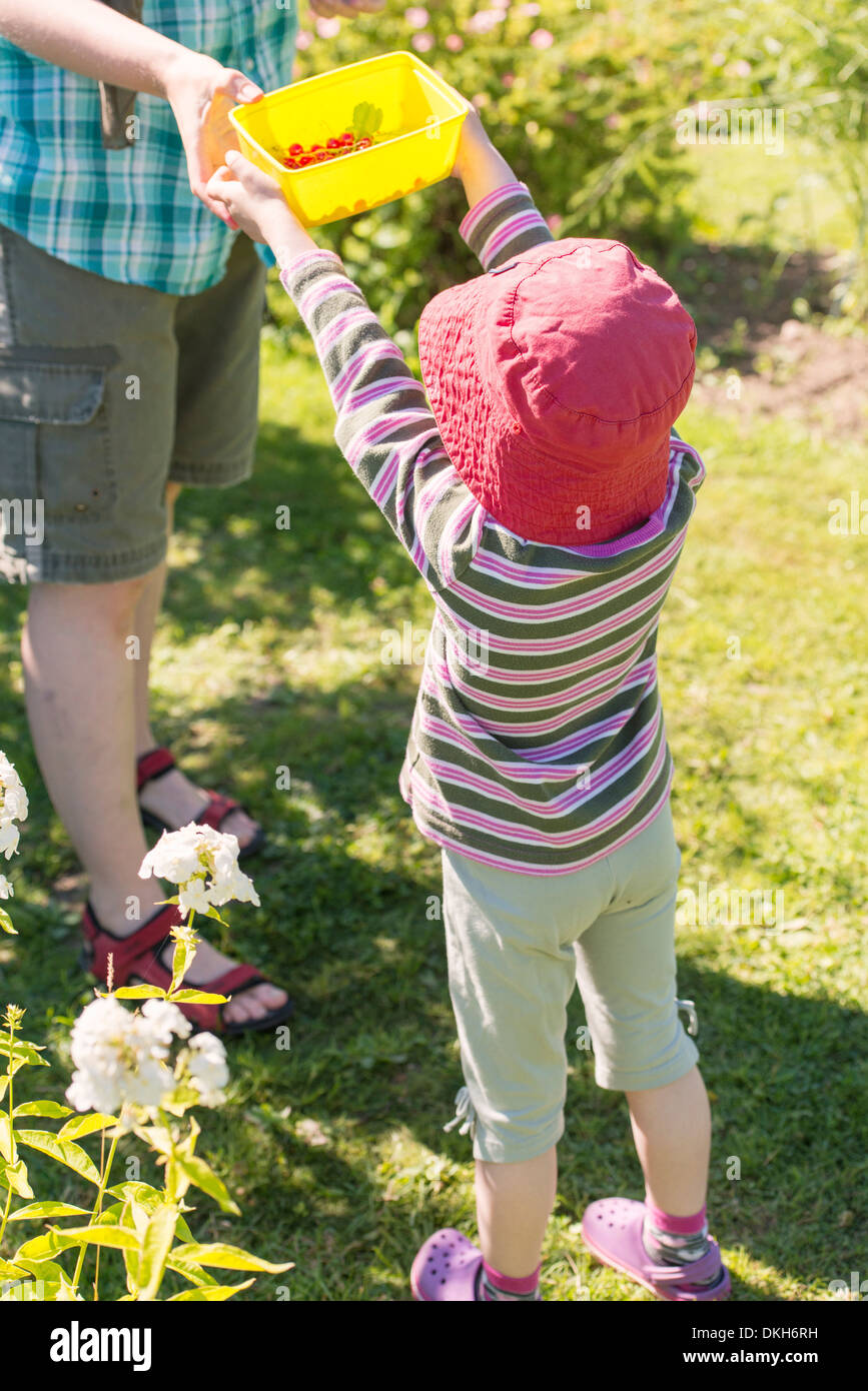 Back view of young child in garden helping her mother with the chores - Stock Image