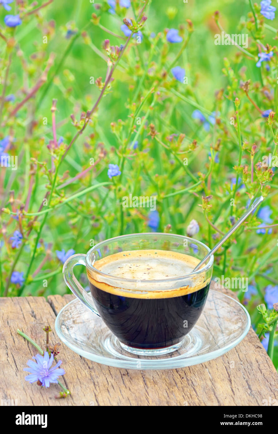 diet drink chicory is coffee substitutes - Stock Image