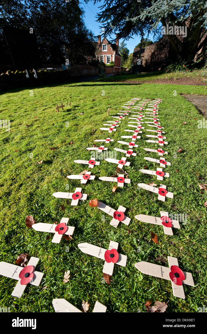 Memorial crosses Armistice Day - Stock Image