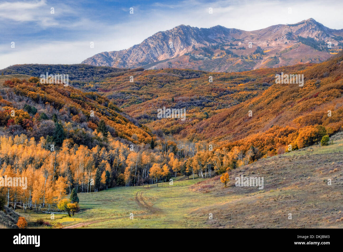 Strawberry Peak and Mount Ogden loom over a small side canyon of Ogden Valley in the Wasatch Mountains of northern Utah. - Stock Image