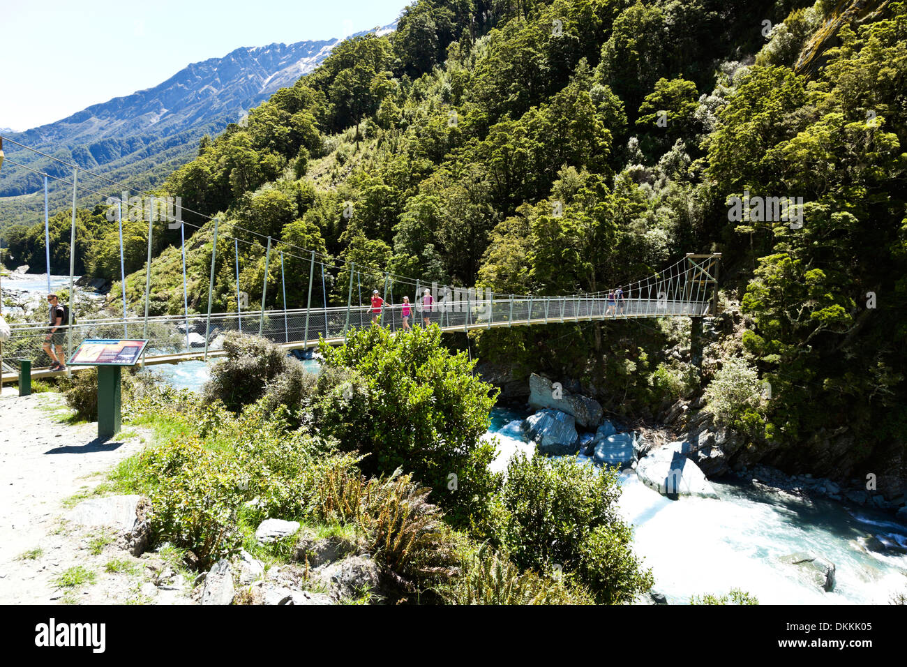 A swing bridge on the tramping path to Rob Roy glacier - Stock Image