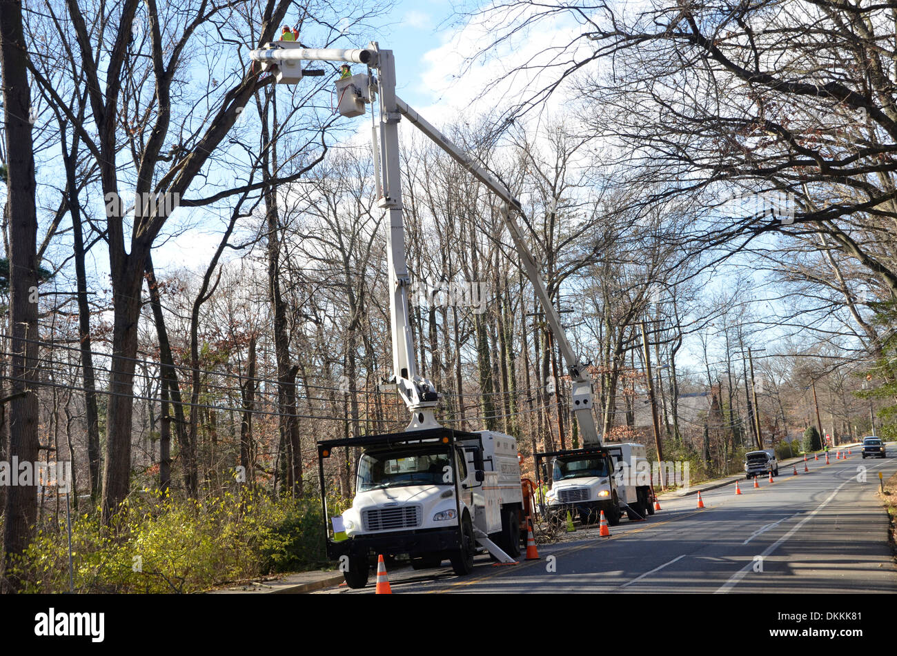 Tree cutters cutting down tree limbs on a tree lined street  in Greenbelt, Maryland - Stock Image