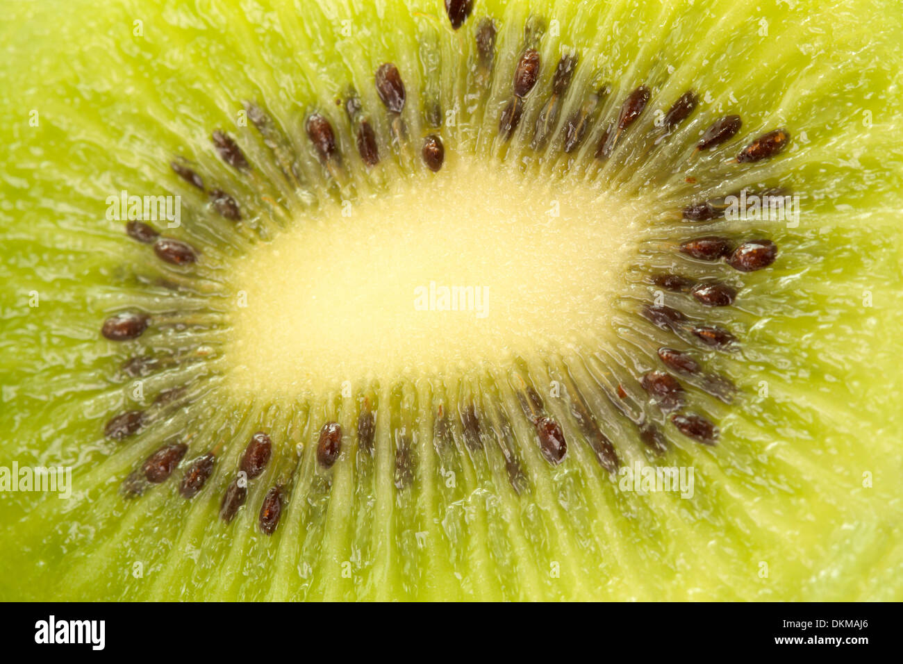 Kiwi fruit close up - Stock Image