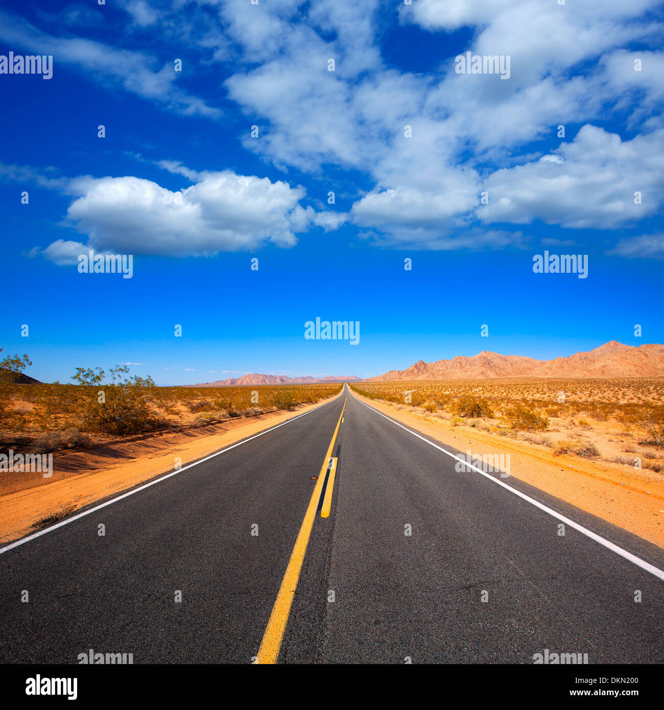 Mohave desert by Route 66 in California Yucca Valley USA - Stock Image