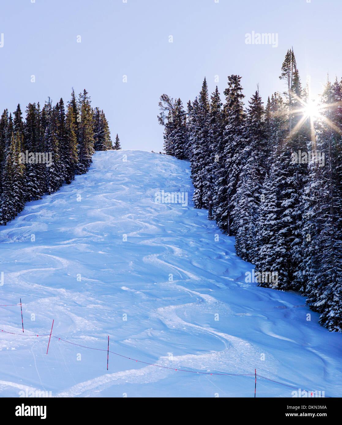 """20"""" of fresh powder snow on Gu..."""
