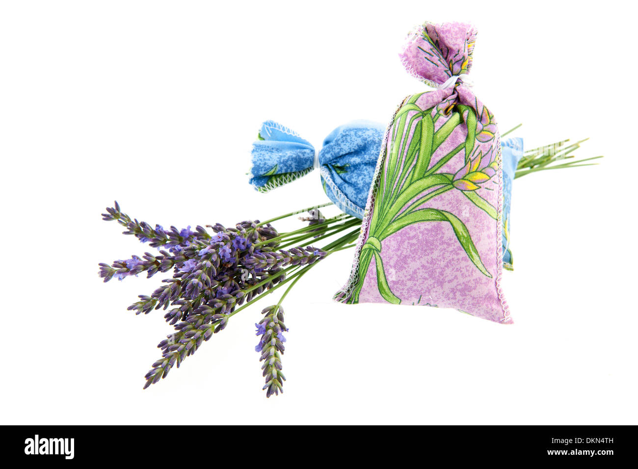 French lavender and dry flowers - Stock Image