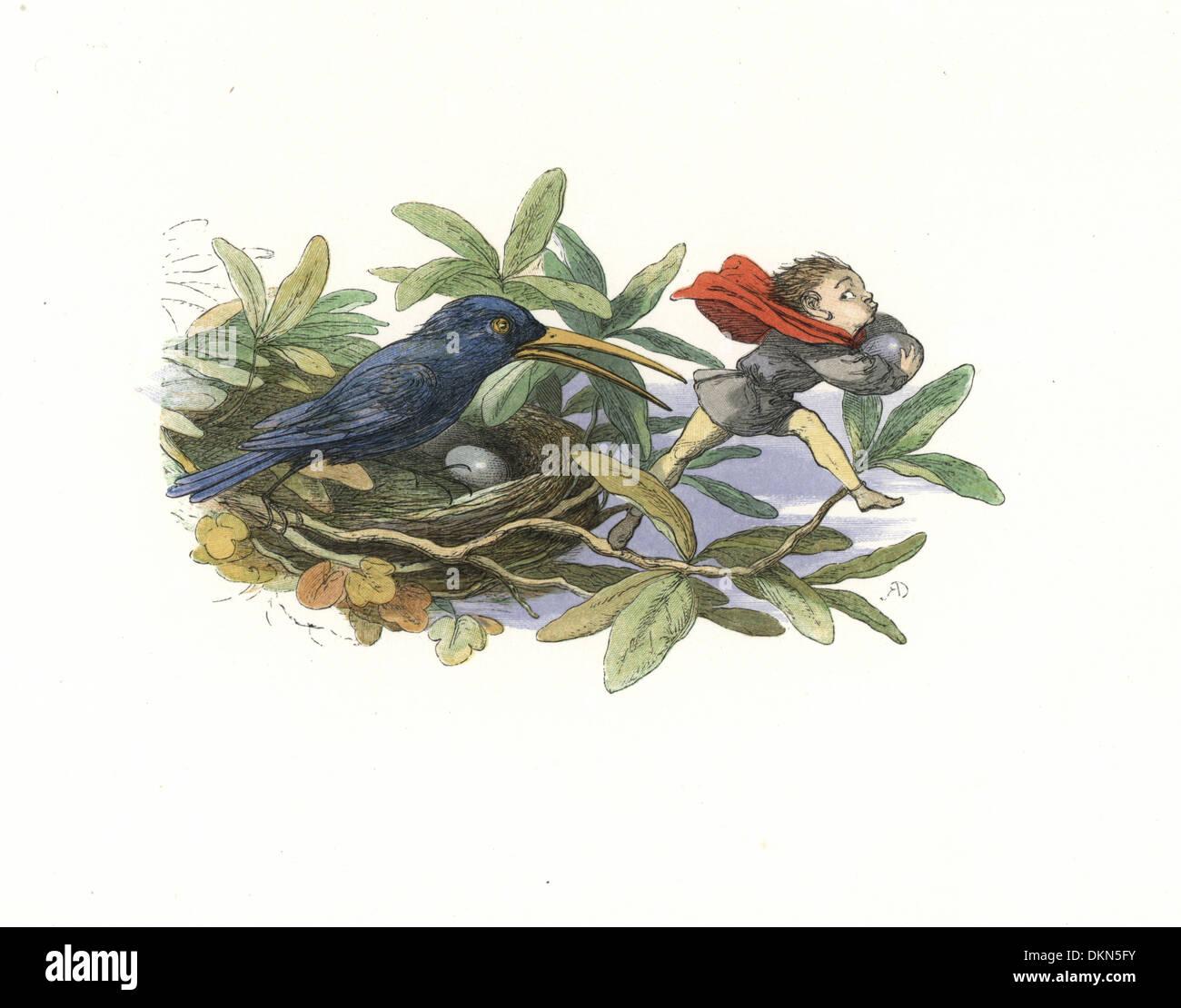 Elf stealing eggs from a bird's nest. - Stock Image
