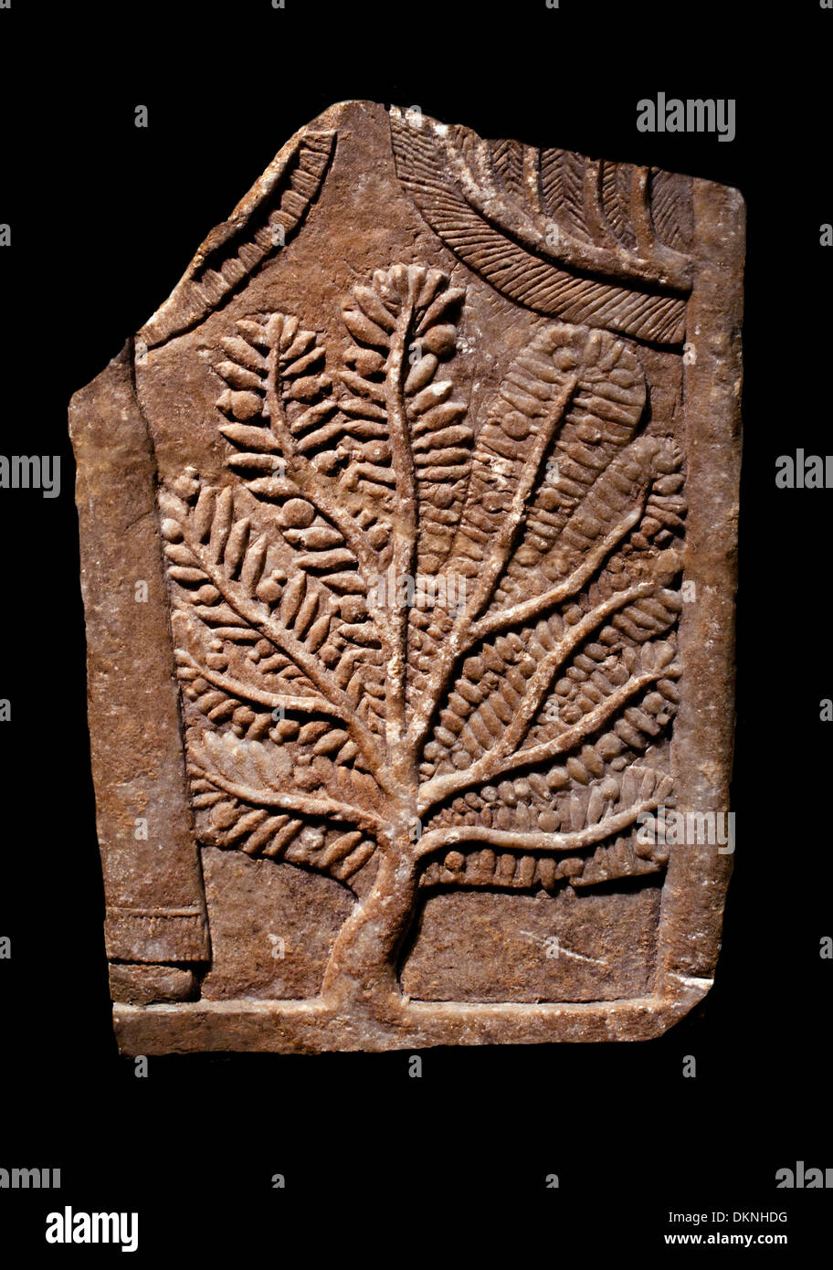 relief depicting a pomegranate tree Iraq Nineveh 669-627 BC - Stock Image