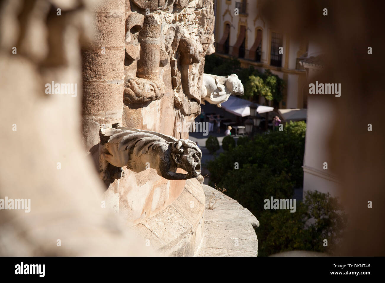 Gargoyles on the cathedral. Seville, Andalusia, Spain - Stock Image