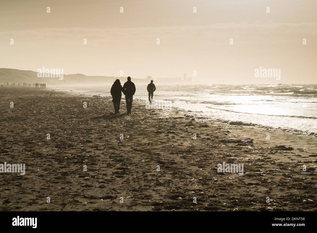 Walkers on the beach at the dutch north sea coastline - Stock Image