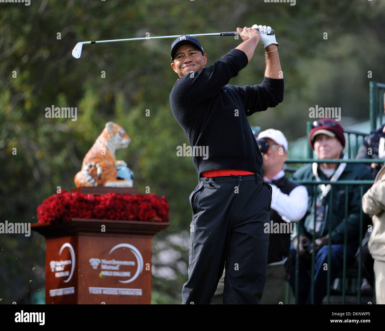 Thousand Oaks Ca Usa 8th Dec 2013 Tiger Woods Hits Off The 1st