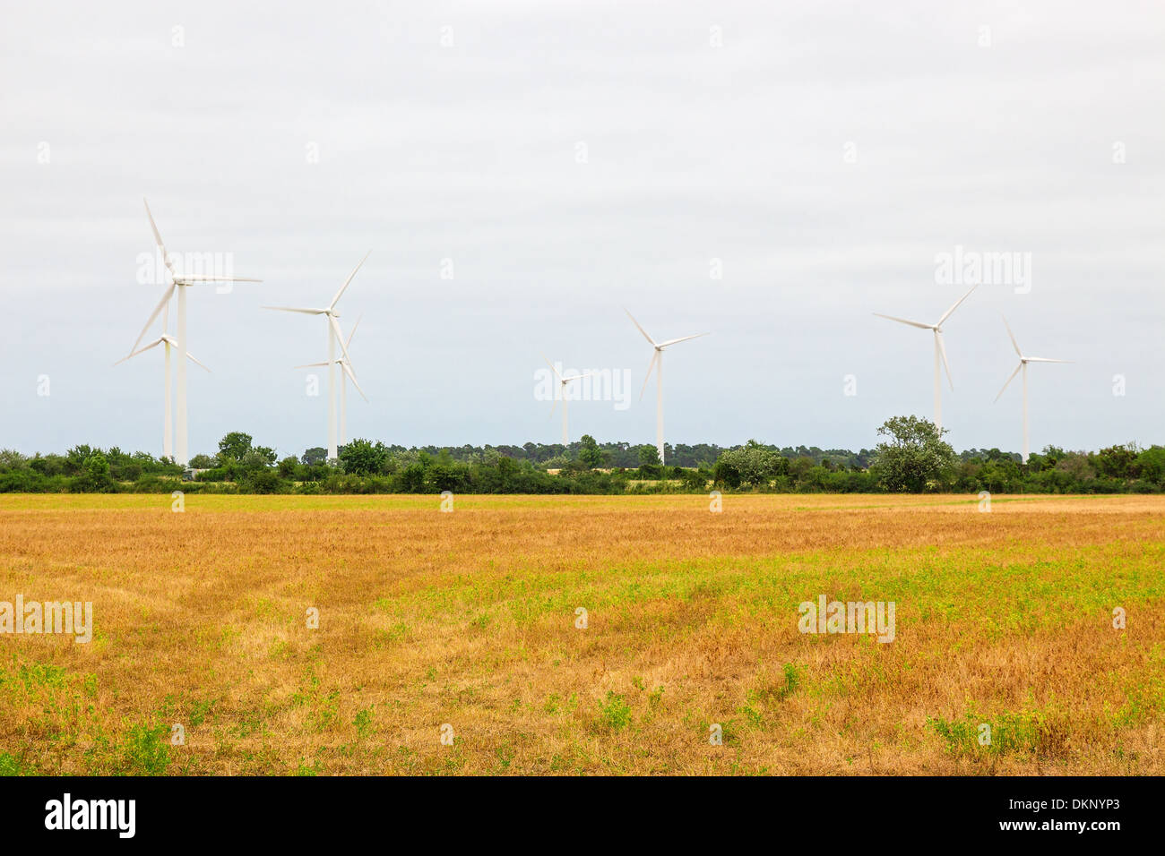 Wind turbines in the countryside, source of alternative energy. - Stock Image