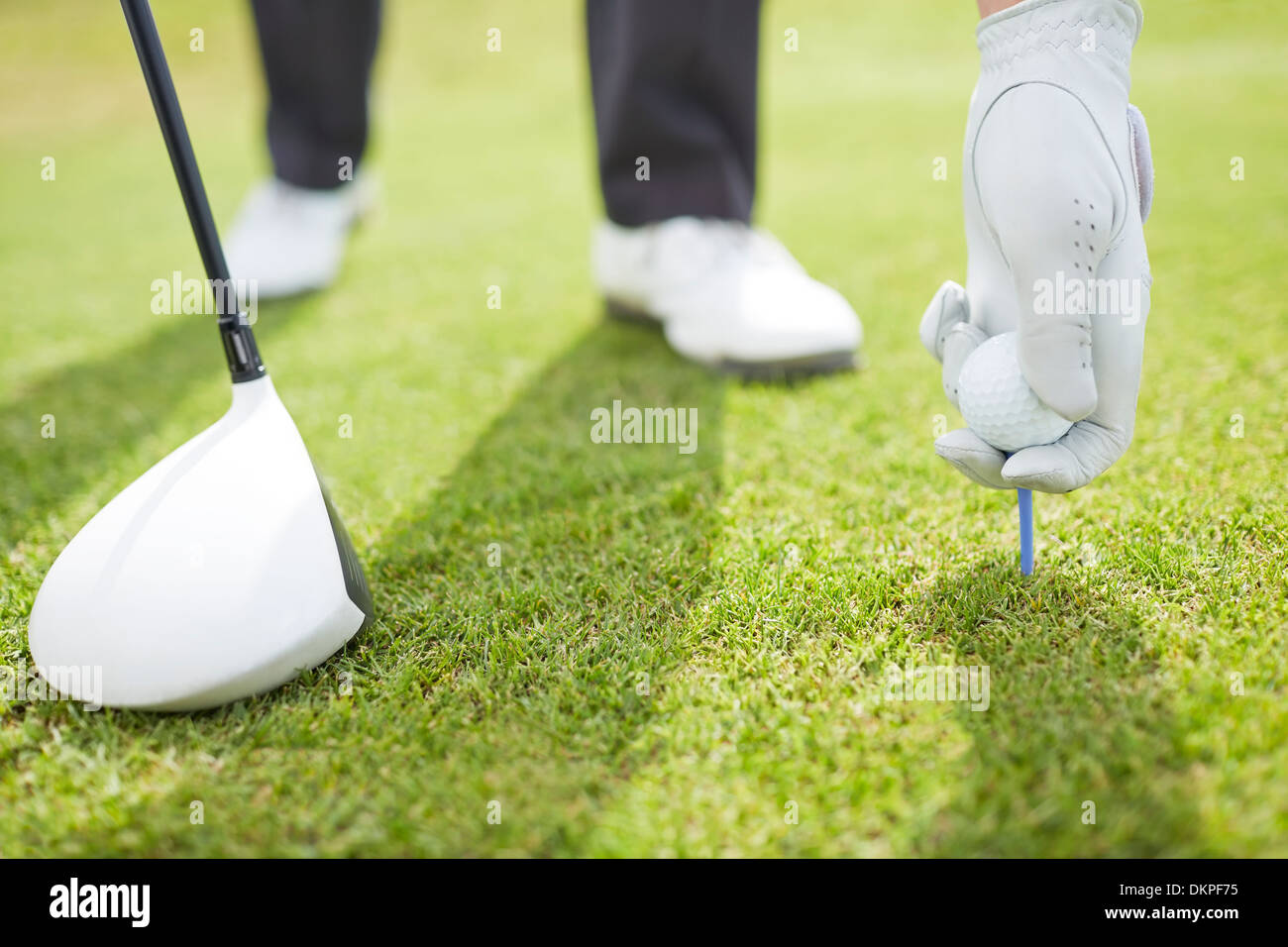 Man teeing golf ball on course - Stock Image