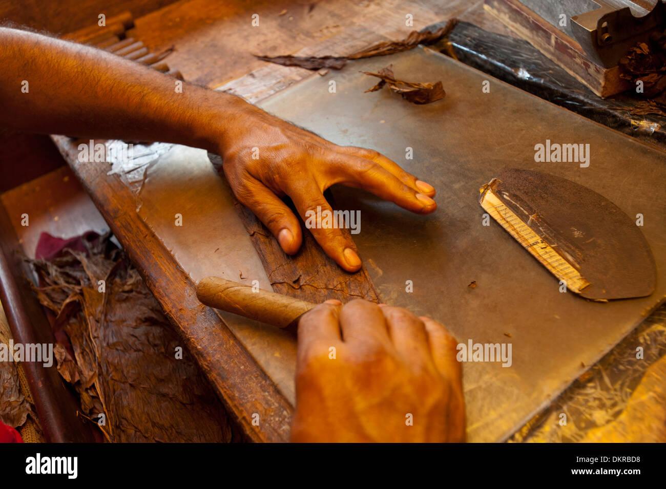 Dominican Republic, production, craft, cigars, cigar, Caribbean, Santo Domingo, tobacco, hands, roll, - Stock Image