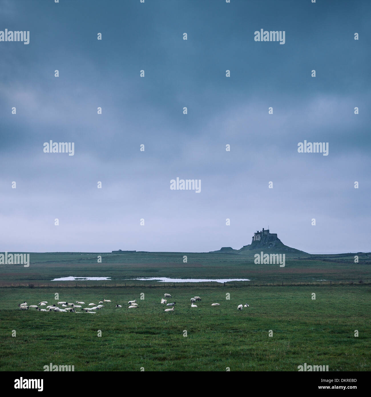 Lindisfarne Castle, Holy Island of Lindisfarne, Berwick-upon-Tweed, Northumberland, England, United Kingdom - Stock Image