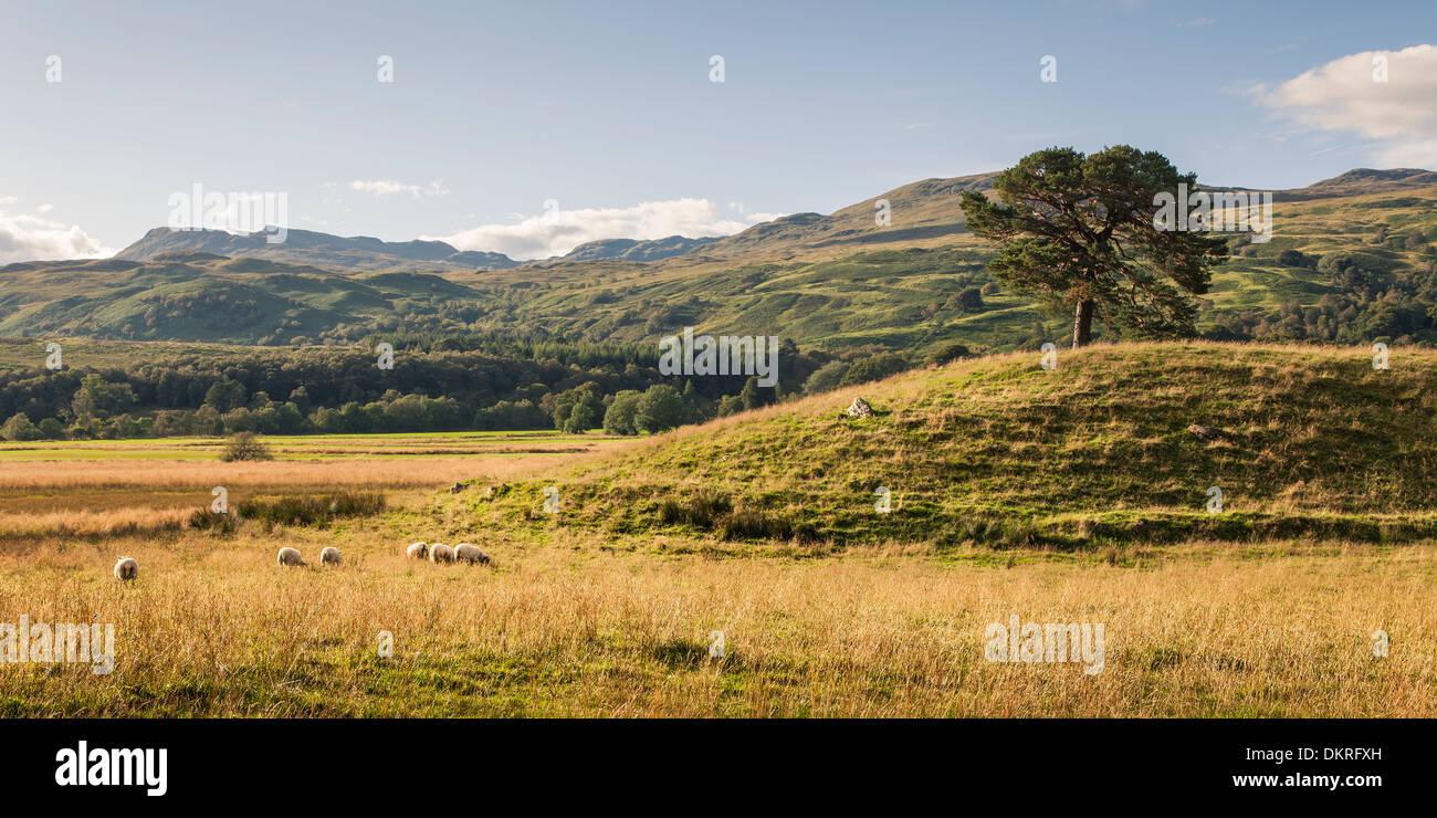 Scottish Highlands, Scotland, Europe - Stock Image