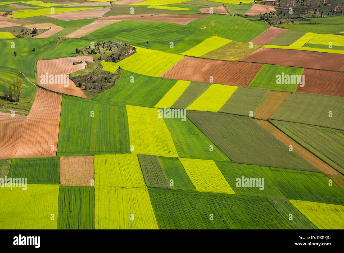 Castilla Castile agriculture colourful colours contrast landscape soria Spain Europe spring touristic travel fields - Stock Image