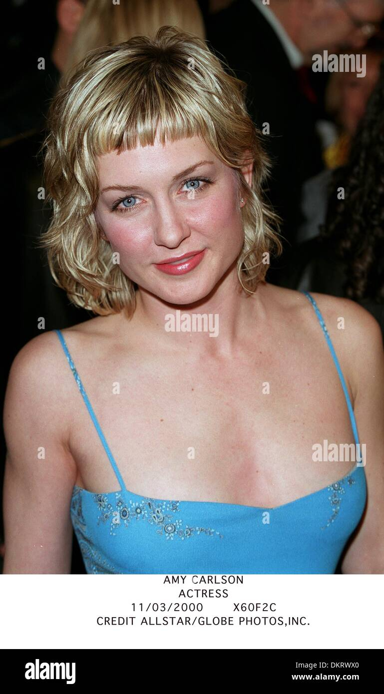 100 Pictures of Amy Carlson Bilder
