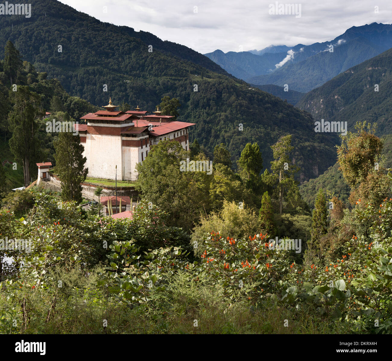 Bhutan, Trongsa, Dzong overlooking Mangde River Valley - Stock Image