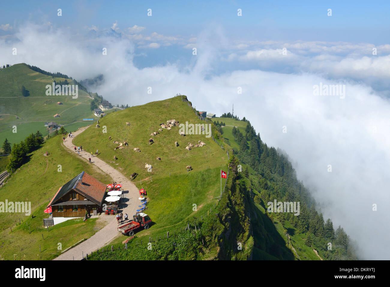 europe swiss switzerland mount rigi mountain schwyz alp farm stock