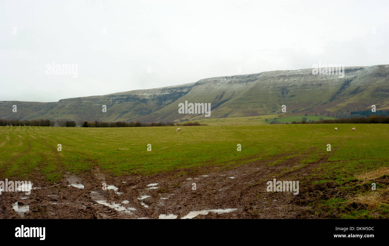Black Mountain Scarp at Talgarth - Stock Image