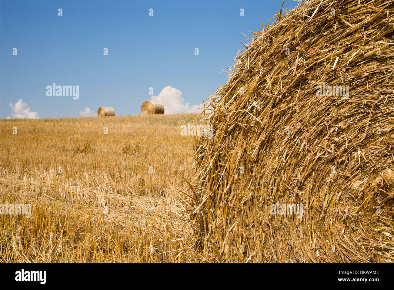 bale of the straw and the sky - Stock Image