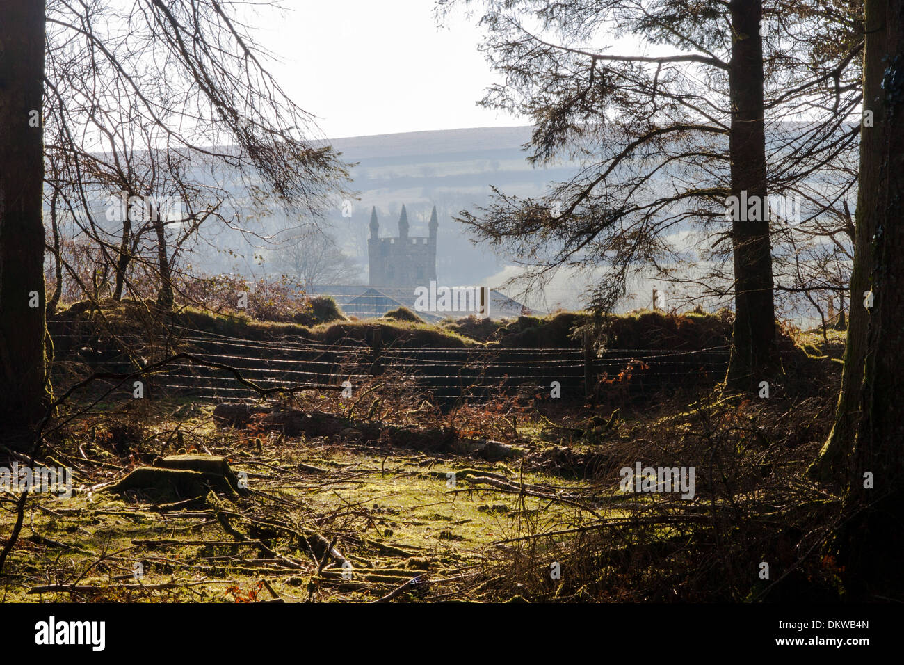 Sheepstor Church in the hamlet of the same name on Dartmoor National Park.  Seen from a plantation at Burrator Reservoir Devon - Stock Image