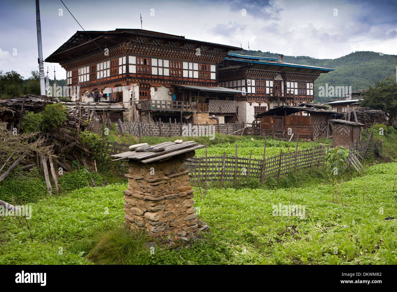 Bhutan, Bumthang Valley, Gaytsa Village, traditionally decorated wood framed houses - Stock Image
