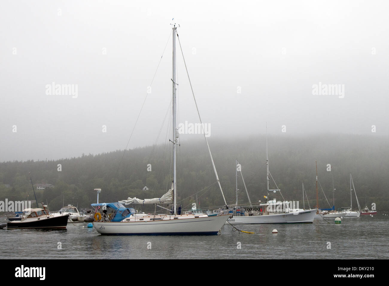 Sailboats moored in Northast Harbor, Maine - Stock Image