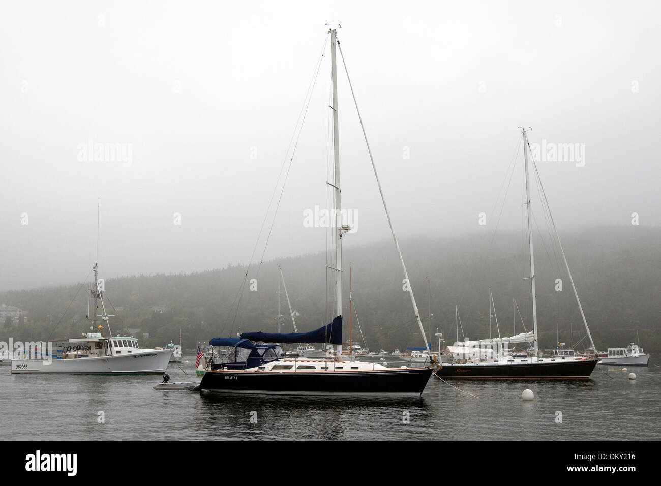 Sailboats moored in Northeast Harbor, Maine - Stock Image