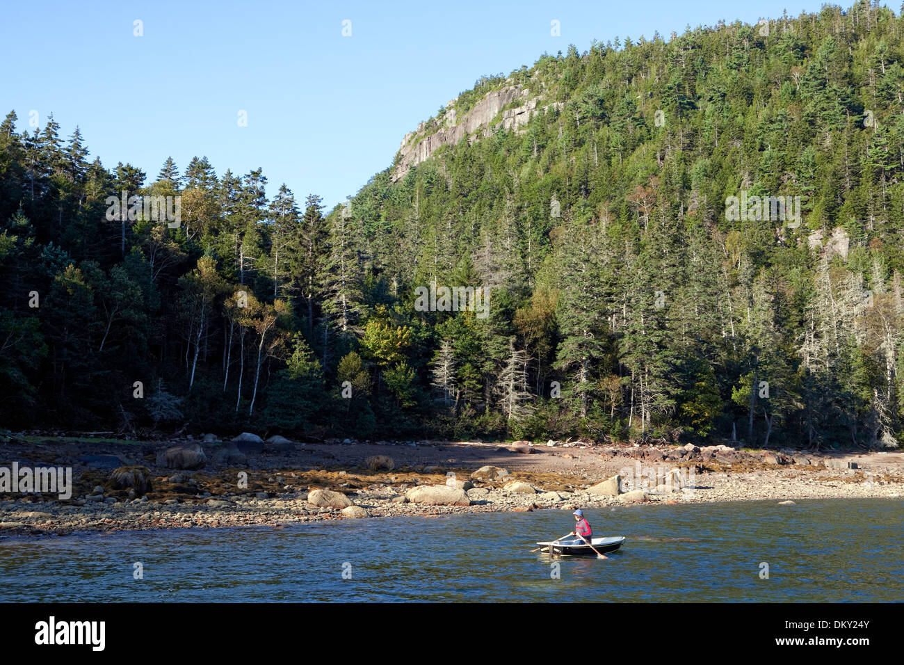 Rowing to shore, Valley Cove, Somes Sound, Mount Desert Island, Acadia National Park, Maine - Stock Image