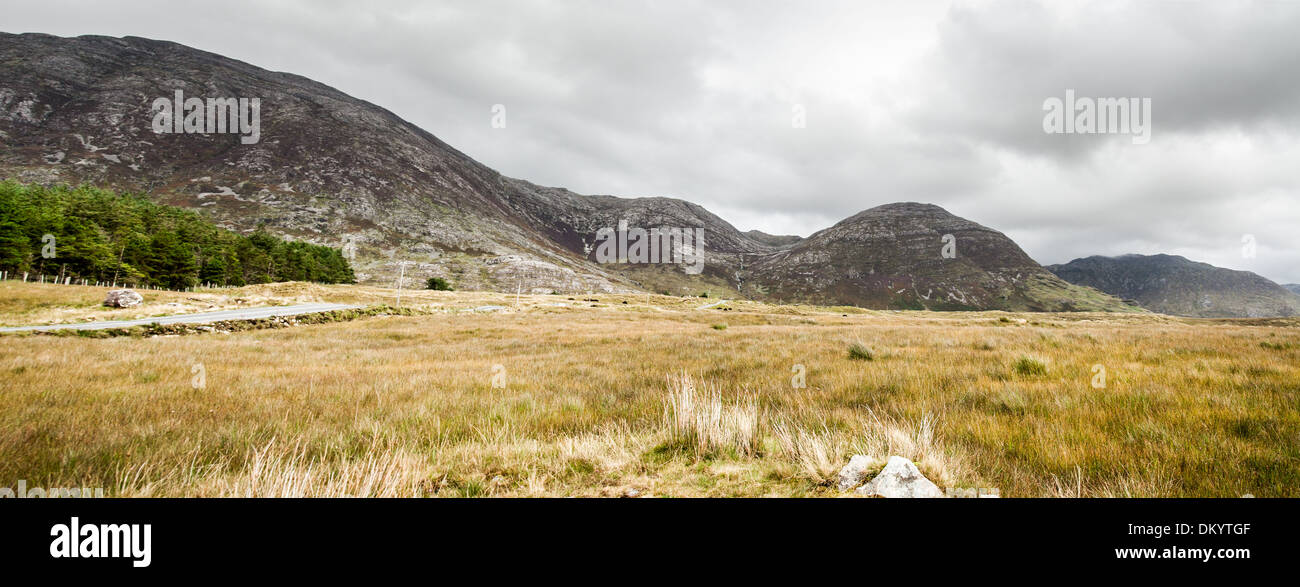 A bog mountains in the west of Ireland - Stock Image