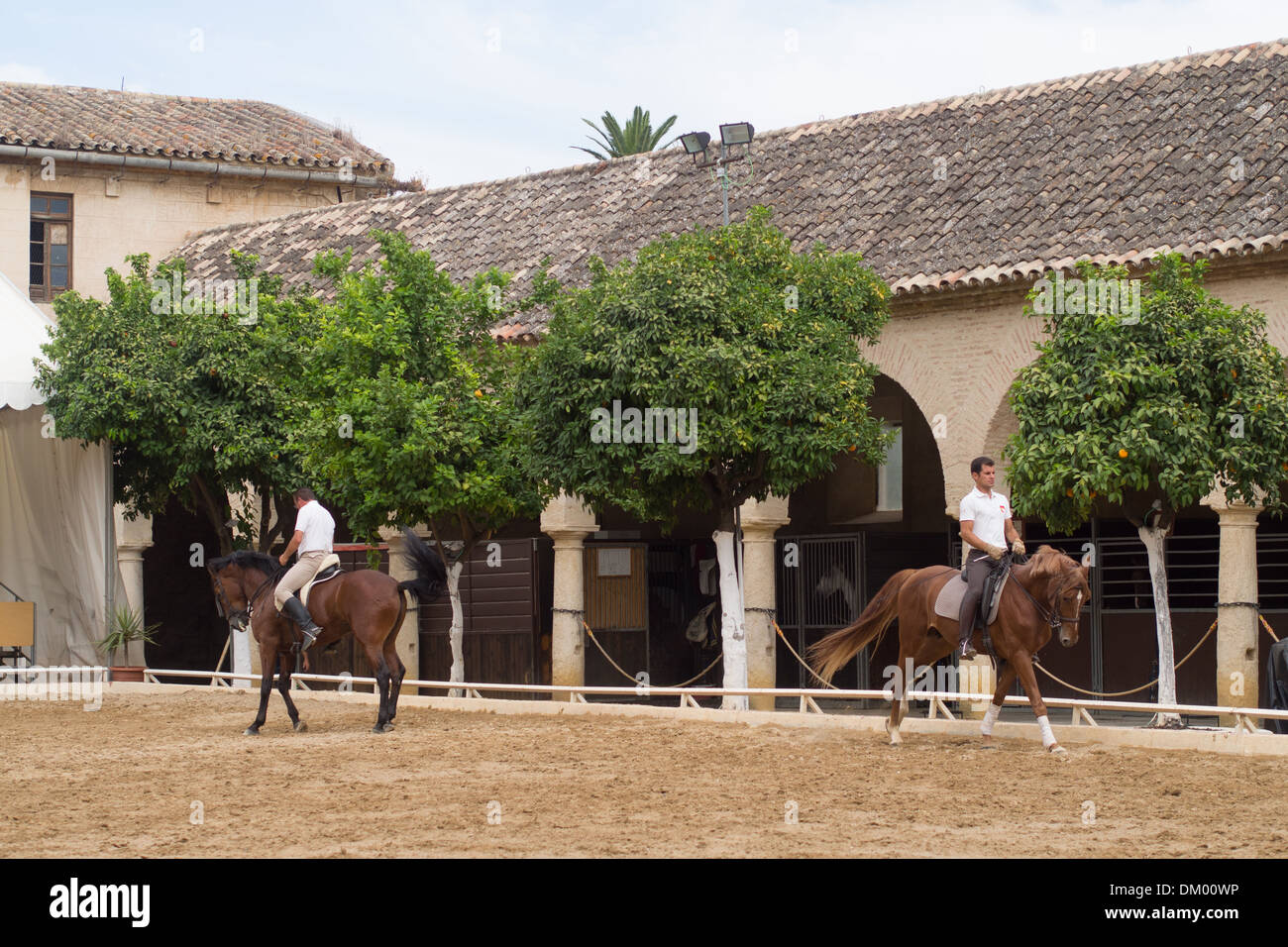 Royal Stables, Cordoba, Andalucia, Spain - Stock Image
