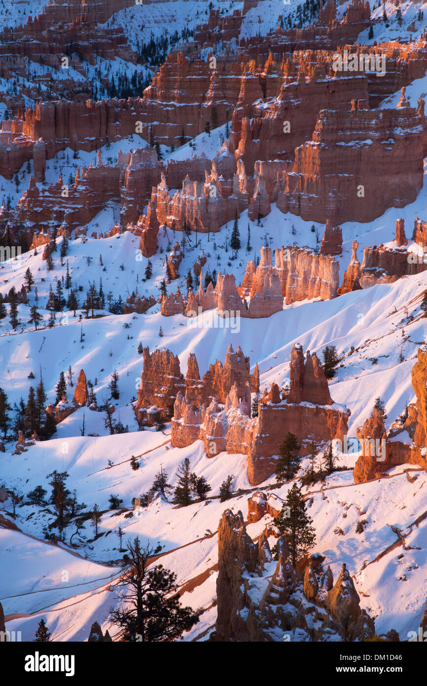 the hoodoos in winter, Bryce Canyon, Utah, USA Stock Photo