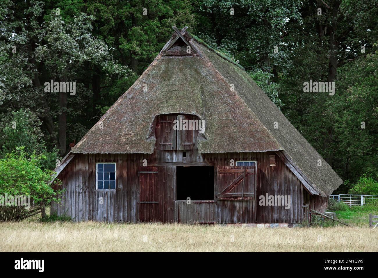 Traditional sheepfold / sheep cote at the Lüneburg Heath / Lunenburg Heathland, Lower Saxony, Germany - Stock Image